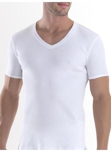 Blackspade Tişört Renkli